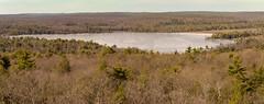 Panorama of Cedar Pond (Dave Landry) Tags: pano flickr winter northamerica towerridgetrail hiking westmilford newjersey places unitedstates pequannockwatershed twobrookstrail passaiccounty america us usa unitedstatesofamerica