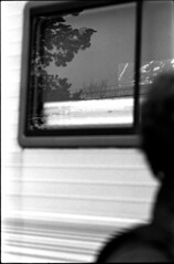"""Rubber tramp"" (Rachelnazou) Tags: caffenol minolta film ilford analog argentique blackwhite"