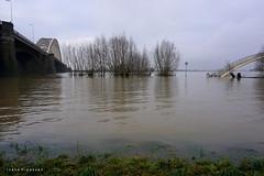 Nijmegen (NED) flooded (Ineke Klaassen) Tags: nijmegen flooded flood hoogwater waal rivier river waalbrug sony sonyimages sonya6000 sonyalpha sonyalpha6000 sonyilce6000 nederland gelderland geldersestreken water hetmeertje 1025fav 20faves nap