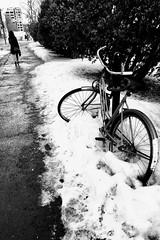 S'éloigner de l'hiver... (woltarise) Tags: bicyclette hiver neige passante montréal streetwise
