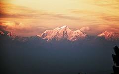 The Langtang from Ranikot Hill Resort, Kathmandu Valley #himalayas #nepal #langtang #ranikot #Kathmandu #asia #backpacking #shangri-la #sunset #mountain #ヒマラヤ #ネパール #ランタン #ラニコット #カトマンズ #アジア旅 #バックパッカー #山 (Hana Samurai) Tags: kathmandu asia himalayas ラニコット shangri アジア旅 ランタン 山 nepal バックパッカー backpacking ヒマラヤ langtang ranikot カトマンズ sunset ネパール mountain