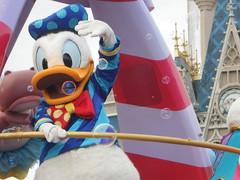 Donald Duck (DisneyGirl13!) Tags: walt disney world waltdisneyworld wdw festival fantasy festivaloffantasy donaldduck duck donald