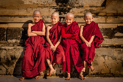 Young Novices Monk (tehhanlin) Tags: anandatemple bagan burmese chinstate htilominlotemple mindatdistrict monks myanmar pagodas rangoon shwedagon shwesandaw shwezigon tatooedface thatbyinnyutemple tribes yangon culture people places travel sony sonyalphaa99 monk ngc