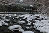 samsebeskazal-2299.jpg (samsebeskazal) Tags: winter newjersey ringwood