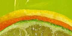 a citrus rainbow (muffett68 ☺ heidi ☺) Tags: macromondays citrus lemon orange lime semicircles arcs rainbow