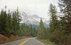 Mt. Rainier National Park (deanrr) Tags: washington washingtonstate landscape epsonv370 1993 park photoshopelements road mountain tree forest wood sky snow september1993 scanned mtrainiernationalpark mtrainier