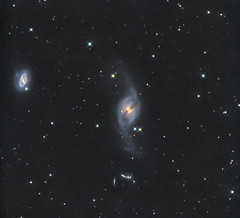 UGC6524 (NGC3718) & other six galaxies in LRGB (Carballada) Tags: astronomy deep space astro celestron zwo as1600mmc skywatcher ts sky qhy qhy5iii174 astrometrydotnet:id=nova2454253 astrometrydotnet:status=solved pixinsight