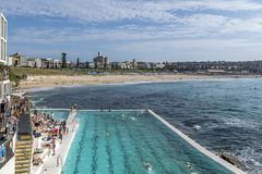_RJS6518 (rjsnyc2) Tags: 2018 australia beach bondibeach d810 day nikon nikond850 ocean richardsilver richardsilverphoto richardsilverphotography sydney travel travelphotographer travelphotography travelphotographywinter city