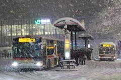 Rushing Home in Snow Storm (seiji2012) Tags: 国立駅 バス 雪 吹雪 ラシュアワー kunitachi bus seiji