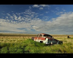 the one to fall (Gordon Hunter) Tags: 1953 chevy chevrolet 210 old vintage 4 door field prairies morning sun clouds clear bright paint colors auto car vehicle radiator chrome bullet holes shot summer abandoned derelict decay countryside rural robsart sk saskatchewan canada gordon hunter nikon d5000 june