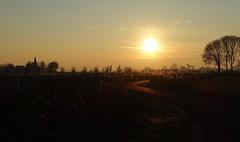 Windig road (brittajohansson) Tags: sunrise sun sunlight winter cold morning road winding windigroad tree sky horizon polder trees reed