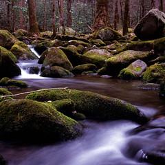 Smoky Cascade (WeldonG) Tags: rolleiflex automatrf111a zeisstessar75mm35 fujifilmvelvia100 3stopndfilter creek cascades rocks winter northcarolina