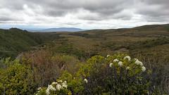 Mangatepopo Valley (Cris_Pliego) Tags: tongariro newzealand nature cloudy mountains volcano tongarirocrossing waterfall trail trek lakes bluelake nationalpark mangatepopovalley emeraldlakes roadtrip backpacking travel ngarotopounamu mordor taupo