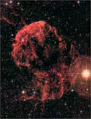 IC443 Jellyfish Nebula (mikeyp2000) Tags: ha ic443 jellyfish stars dso sky nebula space astrophotography hydrogen red