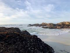 Incoming Tide at Asilomar Beach (skylarprimm) Tags: beach california monterey nature ocean pacific pacificocean sky tide water ✓