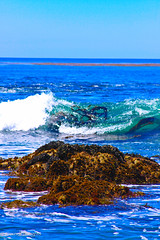 IMG_2555 (CornellBurgessphotography) Tags: seascapes bigsur pointlobos carmelbay california pacificocean montereybay cornellburgess