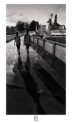 Life, Puddle , Reflection & Shadows (krishartsphotography) Tags: krishnansrinivasan krishnan srinivasan krish arts photography monochrome fineart fine art pupil students reflection shadows puddle water statue bridge compound road trees tamilnadu india kallanai