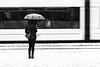 waiting (Sandy...J) Tags: street streetphotography sw schwarzweis strasenfotografie stadt snow snowfall blackwhite bw black white women winter waiting urban umbrella regenschirm monochrom nikon motion reflection spiegelung fotografie frau photography city