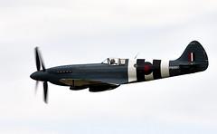 Spitfire (Bernie Condon) Tags: contrarotatingpropeller vickers supermarine spitfire warplane fighter raf royalairforce fightercommand ww2 battleofbritian military preserved vintage aircraft plane flying aviation