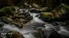 Triberg (️️️️WarCat.) Tags: cascades eau nature water fleursetplantes fleurs longexposure d3300 cascade sigma tourism plantes colors couleurs waterfall europe expositionlongue mountain