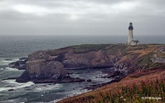 Yaquina Head (pandt) Tags: yaquinahead yaquina headlight lighthouse overcast ocean sea water coastal coast newport oregon rocky cliffs outdoor waterscape canon eos 7d slr