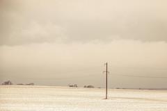 _Q9A4218 (gaujourfrancoise) Tags: belarus biélorussie gaujour landscapes paysages neige snow