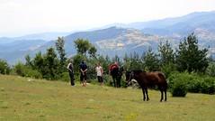 Landscape with horses, Yayla (Rusalsko), Bulgaria (ali eminov) Tags: rusalsko yayla mountains rhodope rodopi people animals horses