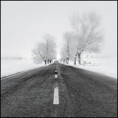 Errepidean (ninaiznaizena) Tags: urbasa nafarroa navarre euskalherria euskalerria basquecountry elurra snow errepidea road ninaiznaizena na718