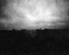 Finale cut / Letzter Schnitt (Rosenthal Photography) Tags: washiw25 6x7 ff120 dunkelheit anderlingen landschaft mittelformat tetenaleukobrom1120°c3min bnw städte schwarzweiss bw analog 201805 mamiya7 asa25 dörfer siedlungen landscape field dark mood darkness endofdays daysofdarkness winter january mamiya 50mm f45 washi washifilm filmwashi washiw 12asa tetenal eukobrom 11 epson v800