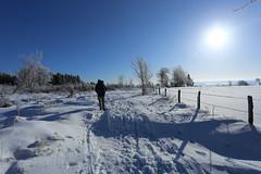 IMG_0232 (rudolf.brinkmoeller) Tags: eifel wandern natur eifelsteig hohesvenn