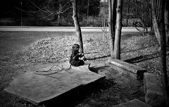 Imaginary time (gborgskij) Tags: kid fantasy stick out film analog gothenburg leica cl kentmere 400 summaron 3528 hc110 dilution b 6min