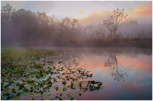Beaver Marsh Dawn by Harry Hitzeman - Award Class A Digital- January 2018