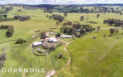 KOORRNONG - Comatawa Road, Tarcutta NSW 2652