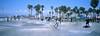 Venice (Travis Estell) Tags: 35mmfilm california californiaonfilm fujiprovia100f hasselbladxpanii laonfilm losangeles losangelescounty losangelesonfilm provia100f thedarkroom thedarkroomlab venice venicebeach veniceskatepark xpan film skatepark unitedstates us