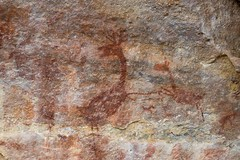 A deer painted on the rocks thousands of years ago (Hari Haru) Tags: landscape nature travel trekking geology archeology rockpaintings serradacapivara