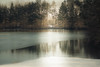 In the morning (nicole ... capture the moment) Tags: nature outdoor scenery loveit beautyofnature freezing frosty wintersday