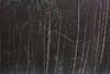fortress of my soul (Mindaugas Buivydas) Tags: lietuva lithuania color winter january fog mist tree trees birch mood moody trakųistorinisnacionalinisparkas trakaihistoricalnationalpark shallowdepthoffield mindaugasbuivydas sadnature