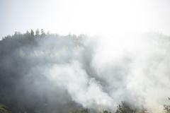 Spring. Field burning smoke. by mokuu - 福岡県糟屋郡新宮町 / Sony α7II × Canon EF 40mm F2.8 STM / JB C3 02 012 / mokuu.cc/2018/03/post-416.html