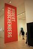 Robert Rauschenberg at SF MoMA (JB by the Sea) Tags: sanfrancisco california december2017 urban financialdistrict sanfranciscomuseumofmodernart sfmoma robertrauschenberg
