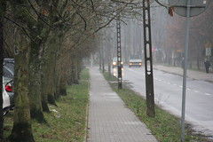 Biskupińska street , Poznań 11.01.2018 (szogun000) Tags: poznań poland polska city road sidewalk trees alley street suburbs wielkopolskie wielkopolska greaterpoland canon canoneos550d canonefs18135mmf3556is