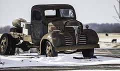 1941 Fargo (1) (G. Maxwell) Tags: 2018 zuiko winter ontario olympus em1mkii autophotography rustyandcrusty trucks oldrustystuff oldstuff olym40150mmf28 places haydon snow fargo rust fargotrucks