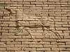 Western Wall lower Ishtar Gate, Babylon (10).jpg (tobeytravels) Tags: iraq babylon babel mesopotamia akkadian amorite hammurabi assyrian neobabylonian hanginggardens achaemenid seleucid parthian roman sassanid alexanderthegreat nebuchadnezzar sargon chaldean hittites sennacherib xerxes