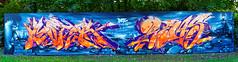 Artists: Moter, Rems, DFE Crew (pharoahsax) Tags: moter graffiti karlsruhe ka pmbvw bw baden württemberg süden deutschland kunst art streetart street urban urbanart paint graff wall germany artist legal mural painter painting peinture spraycan spray writer writing artwork tag tags worldgetcolors world get colors