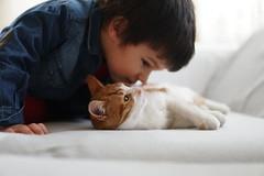 Friendship. (@ tameristan) Tags: grandson boy friend friendship cat yellow people love lovely tameristan