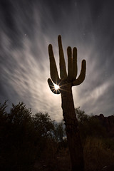 Tequila Moonrise (Darkness of Light) Tags: moon moonrise flare star cactus saguaro cloud motion desert arizona superstition mountains tonto forest phoenix tempe mesa full happy new year 1st sony a7r2 a7rii voigtlander heliar super wide 15mm lost dutchman tortilla flat silhouette glow