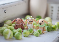 hello spring (free_dragonfly) Tags: bunny rabbit miniature toys toyphoto toyphotography toy cute felt handmade tiny animals green