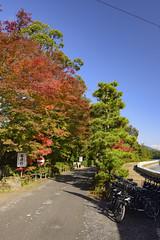 Japan 2017 Autumn_524 (wallacefsk) Tags: autumn japan kyoto miyazu monju redleaves 京都 宮津 文珠 日本 秋天 紅葉 關西 miyazushi kyōtofu jp