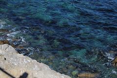 IMG_7566 (mudsharkalex) Tags: california pacificgrove pacificgroveca