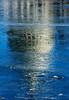 U.S. Capitol (PuraVida Photo) Tags: uscapitol washingtondc congress senate budget daca chip