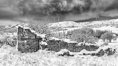 Recuerdos del pasado (fotochemaorg) Tags: alairelibre antiguo árbol blancoynegro colina escenarural guadalajara imagengrabada invierno mazarete montaña naturaleza nieve paisaje ruina